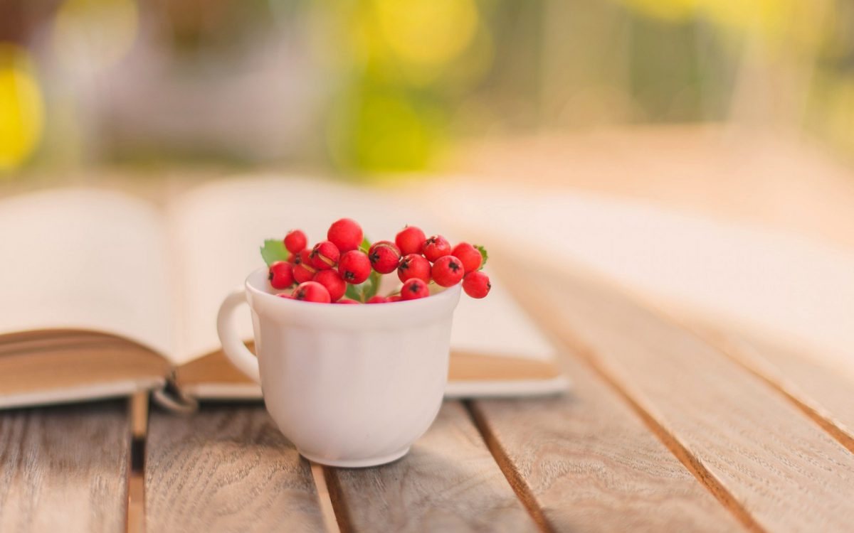 book-cup-mug-berry-red-autumn-1